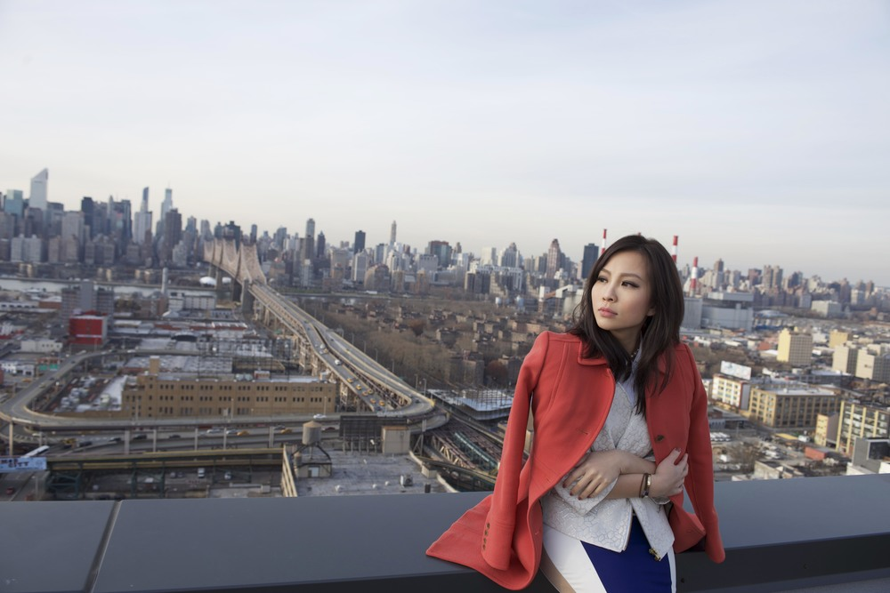 Long island city rooftop view.jpg