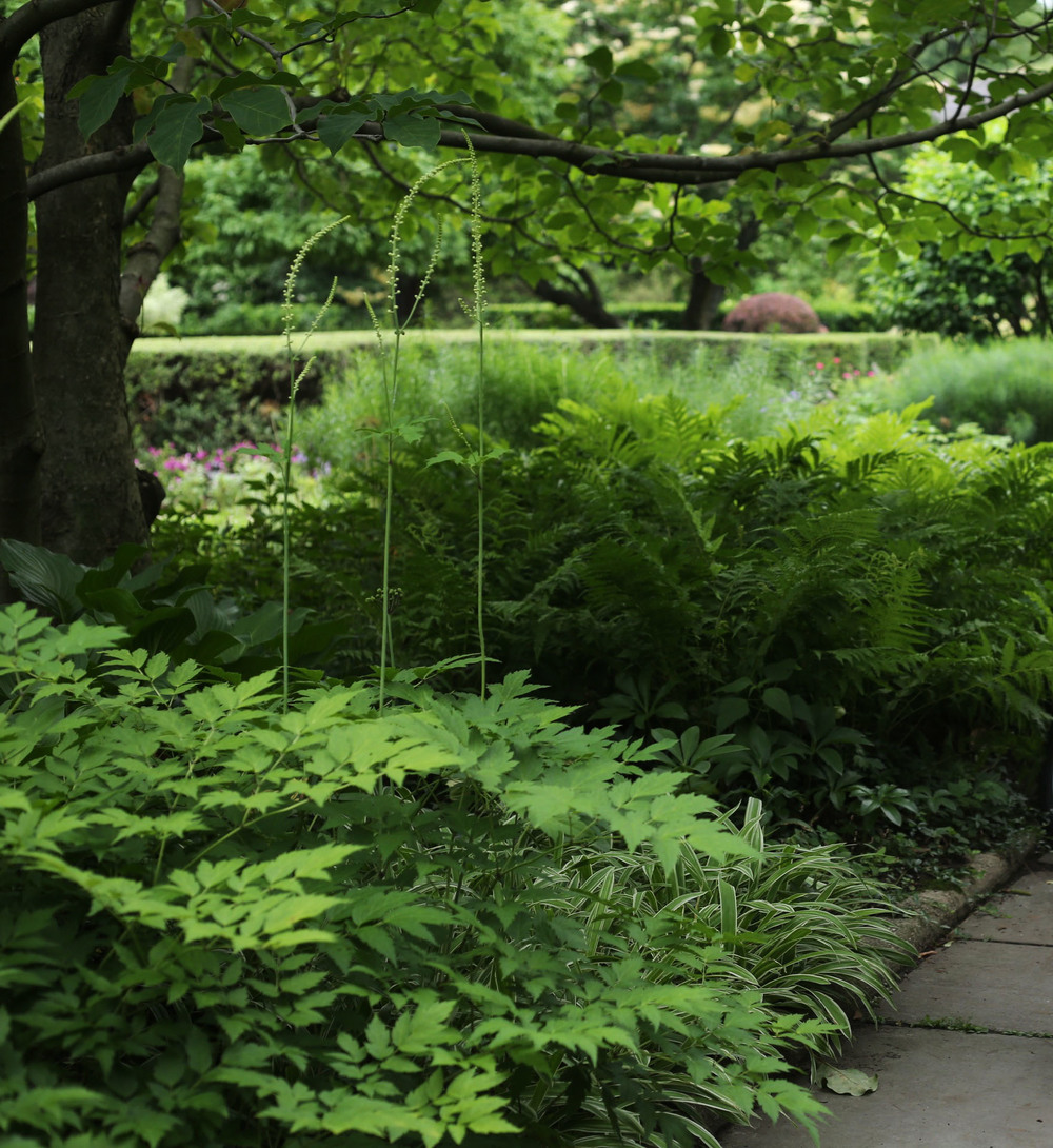 Central Park Conservatory Garden 2.jpg