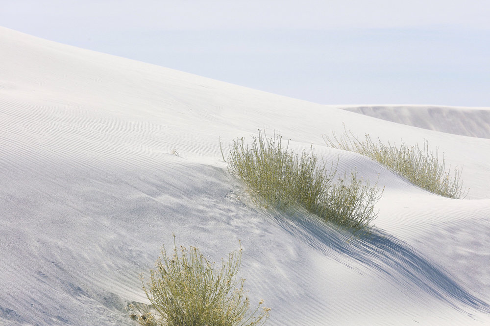 White Sands National Monument 1.JPG
