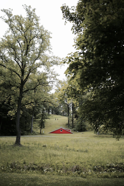 strom king art center the outlook.jpg