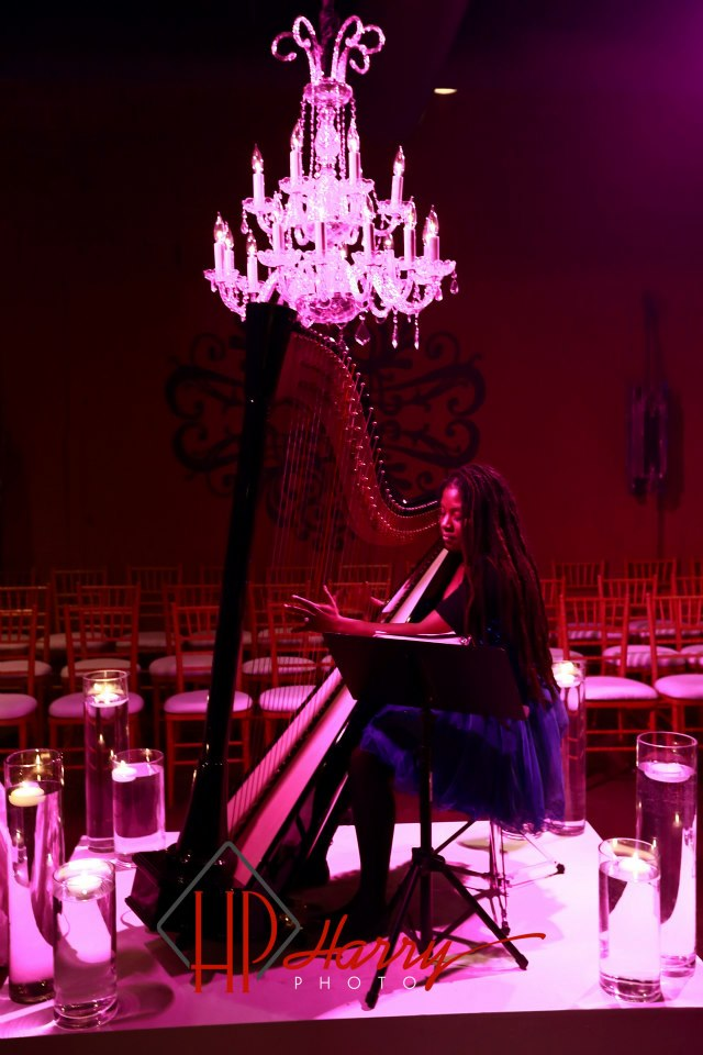 LIDE 2012 Bridal Open House Harpist.jpg