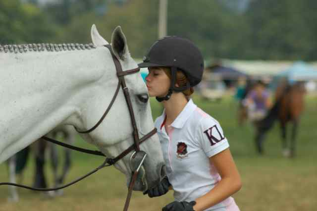 Archway Horse Shows008.jpg