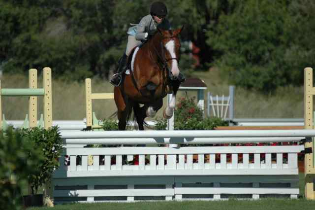 Archway Horse Shows026.jpg