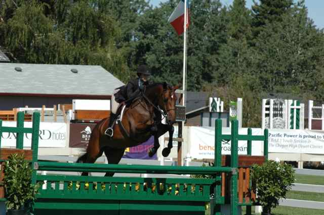 Archway Horse Shows030.jpg