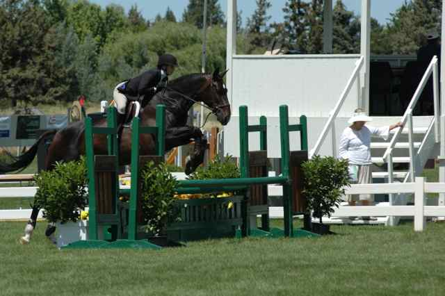 Archway Horse Shows033.jpg