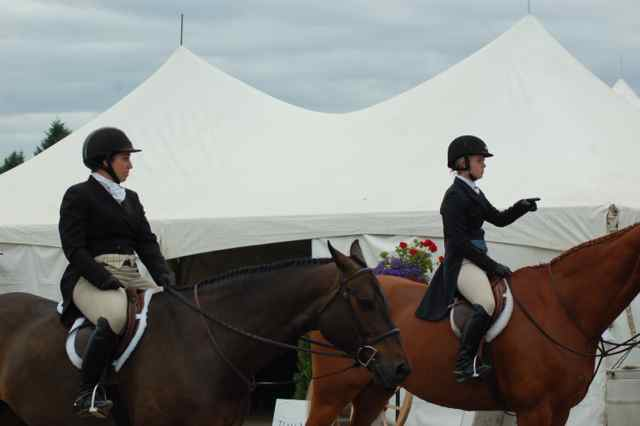 Archway Horse Shows049.jpg