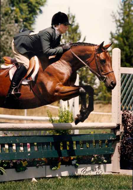 Archway Horse Shows063.jpg