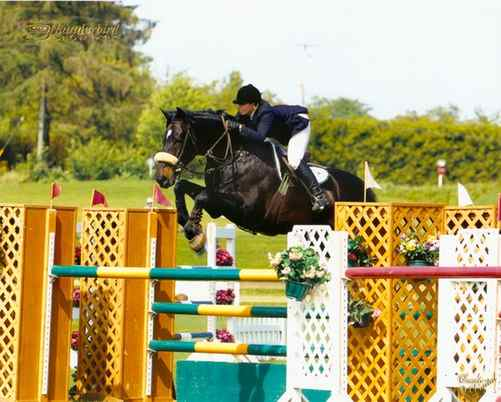 Archway Horse Shows077.jpg