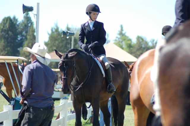 Archway Horse Shows081.jpg