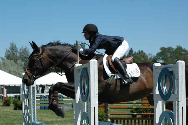 Archway Horse Shows086.jpg