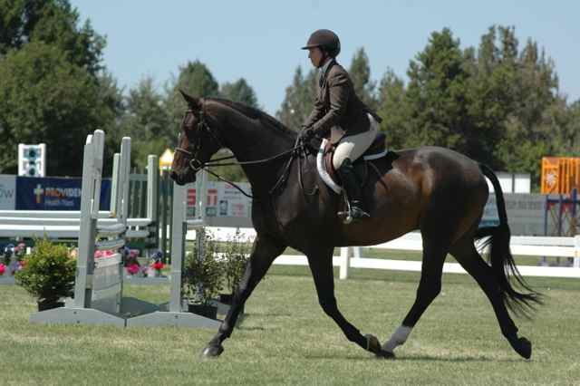 Archway Horse Shows088.jpg