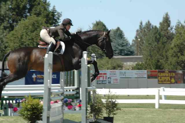 Archway Horse Shows090.jpg