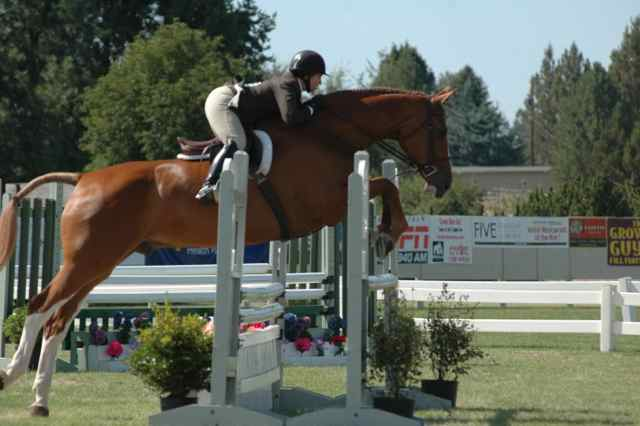Archway Horse Shows091.jpg