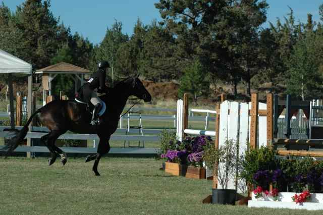 Archway Horse Shows098.jpg