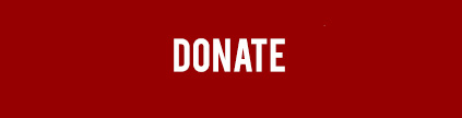 donate small icon.jpg