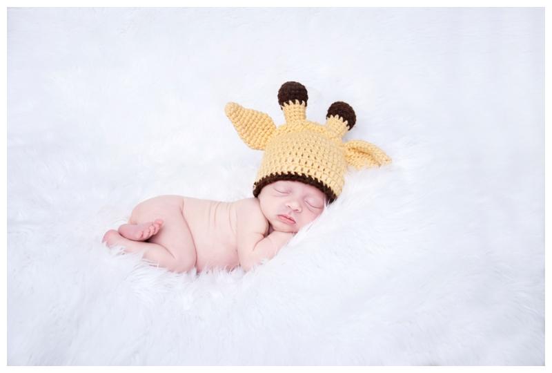 newborn baby giraffe.jpg