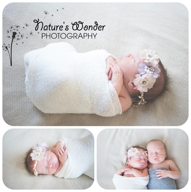 indianapolis twin photographer newborn baby