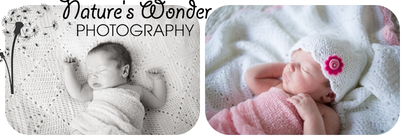 indianapolis newborn baby girl photographer