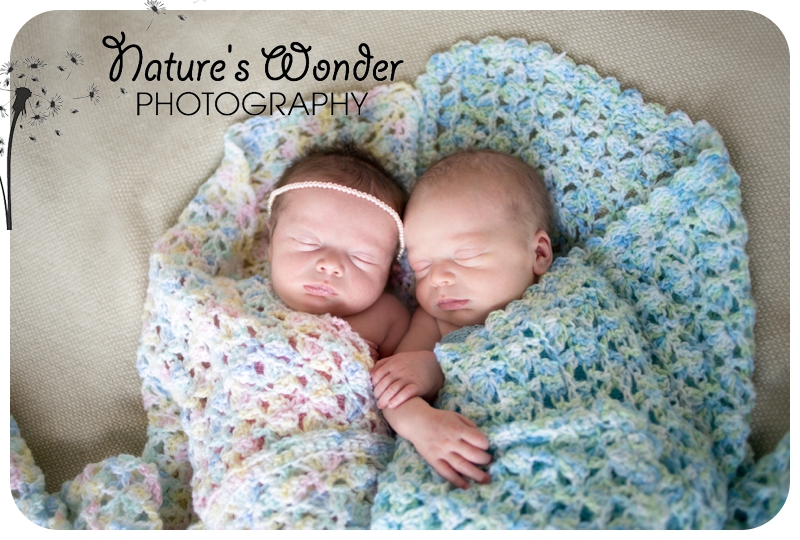 indianapolis newborn twin photographer
