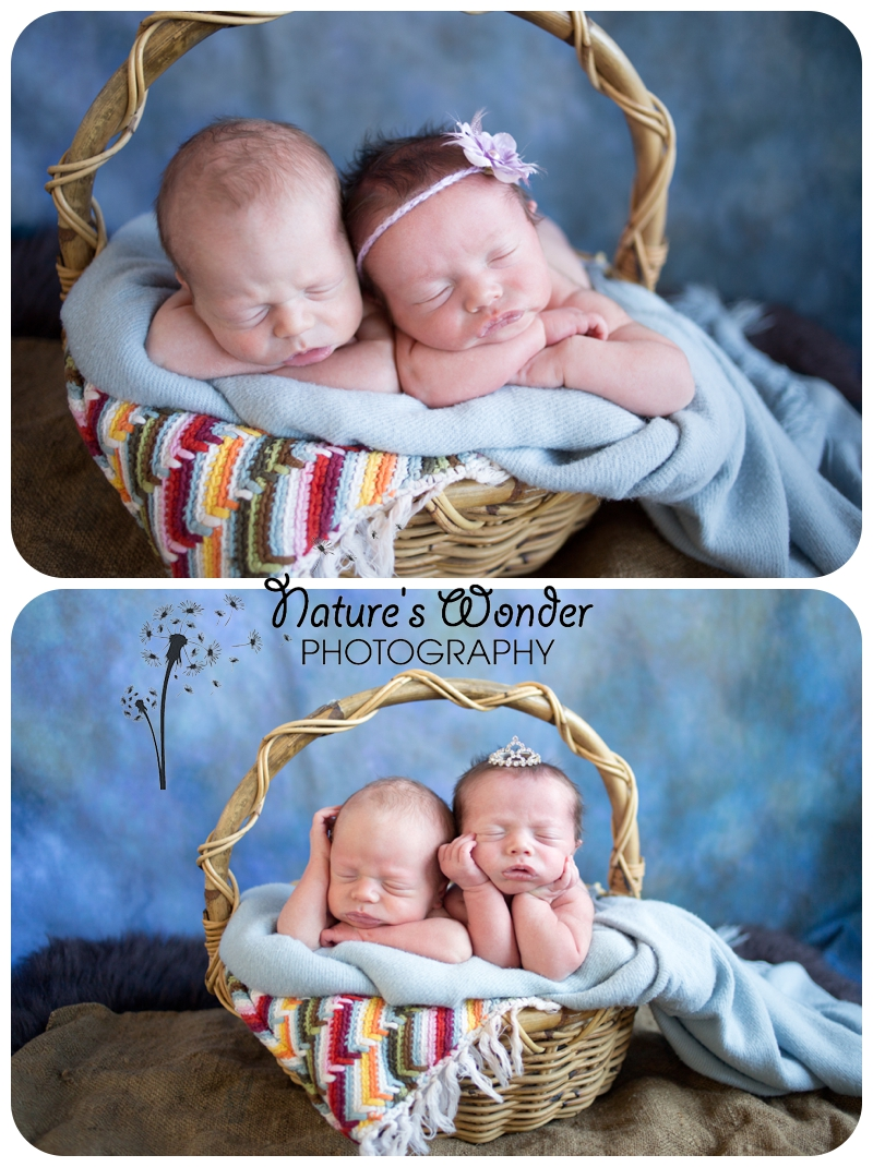 newborn twin photographer indianapolis baby in a basket