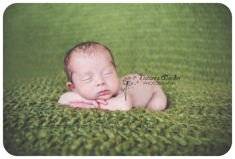 indianapolis newborn twin photographer_0008.jpg