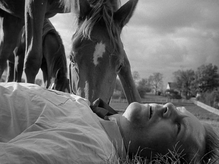 Top Ten: Cinema's Most Treasured Image #10