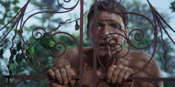 154. The Swimmer (1968)