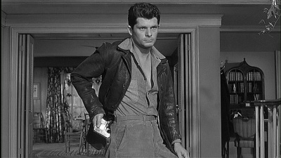 Dewey Martin as Hal Griffin in  The Desperate Hours