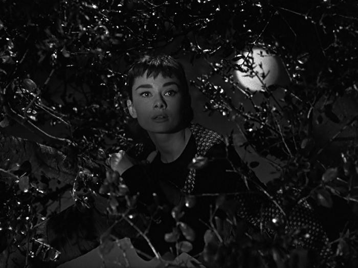 211. Sabrina (1954)