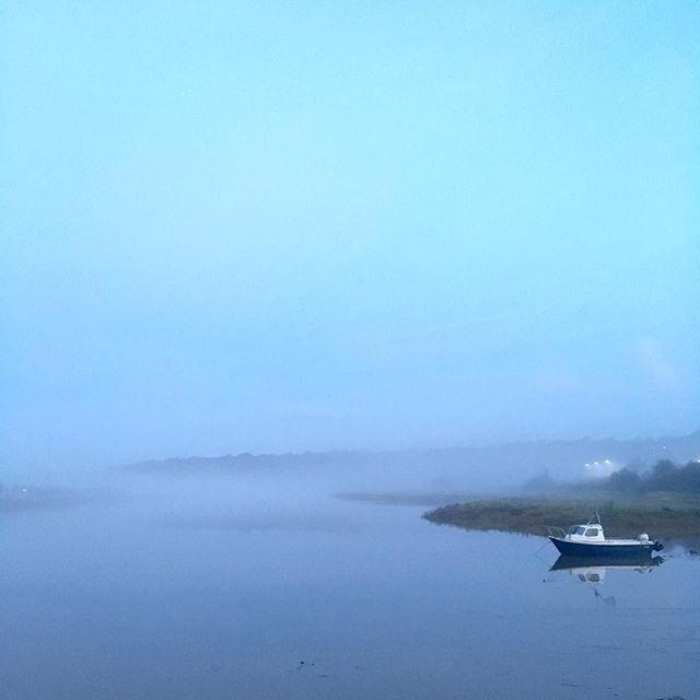 Misty start #Wednesday #playmistyforme #misty #SeaMills #igersbristol #bristol #RiverAvon