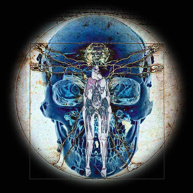 Anatomia Digitale