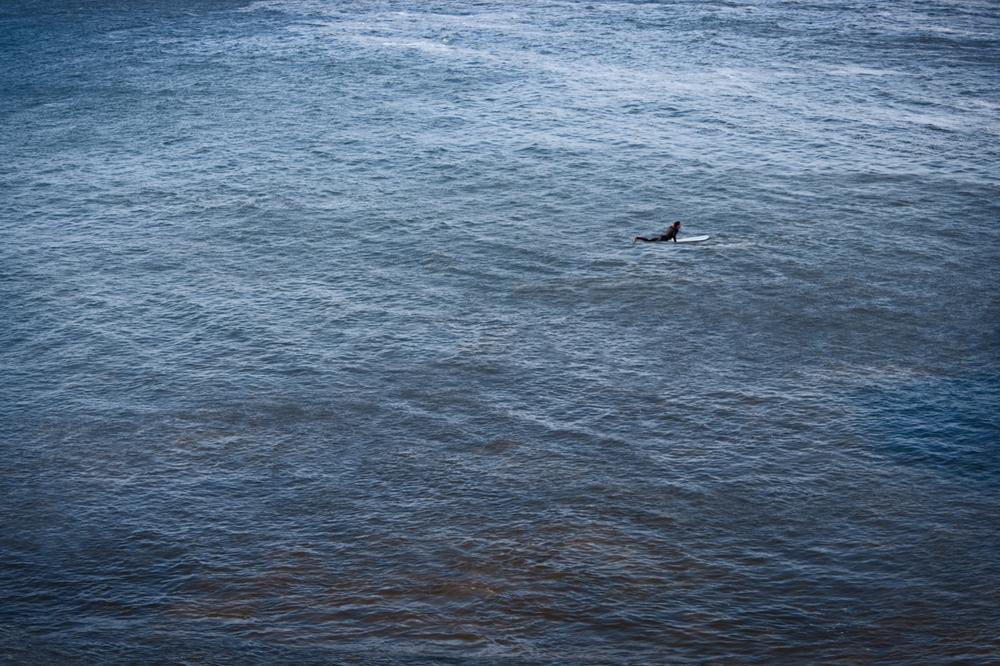 Malibu Surfers 2