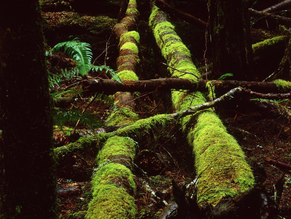 British Columbia 4