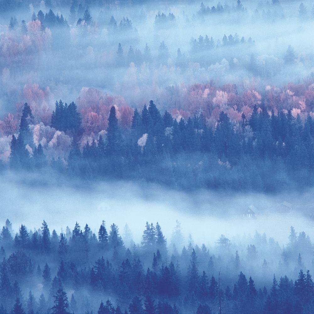 The Cascades 1