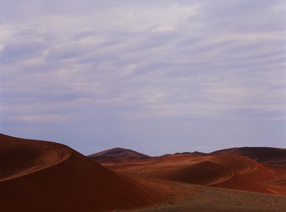 Landscapes 16