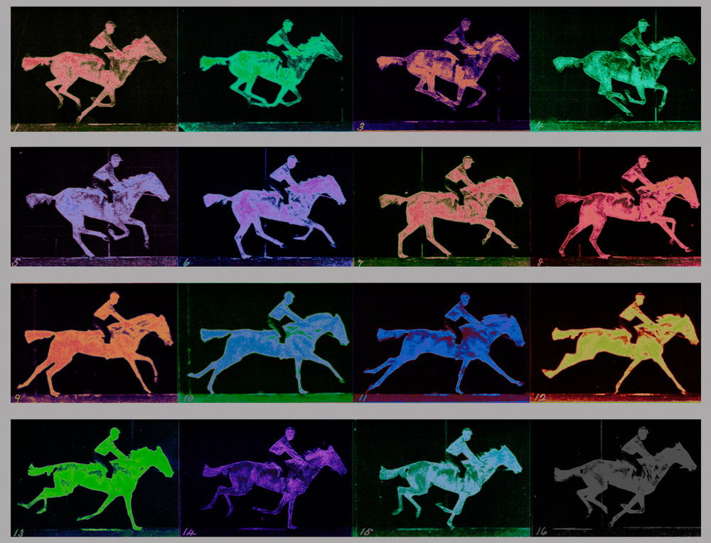 Muybridge, Eadweard (The Gallop 1887)