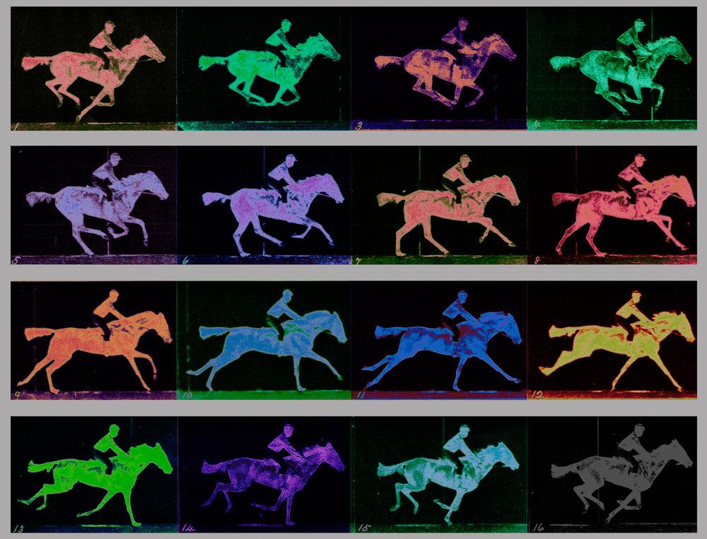 Muybridge, Eadweard (The Gallop 1887)