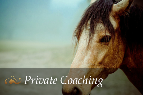 img-private-coaching5.png