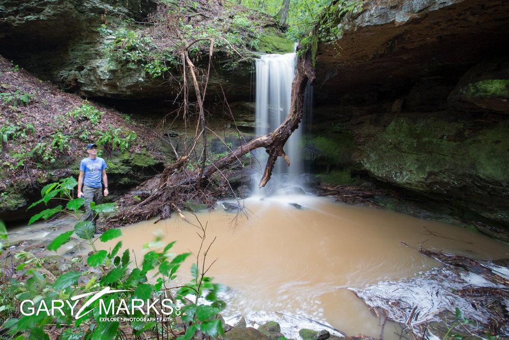32 - Tree Rot Falls