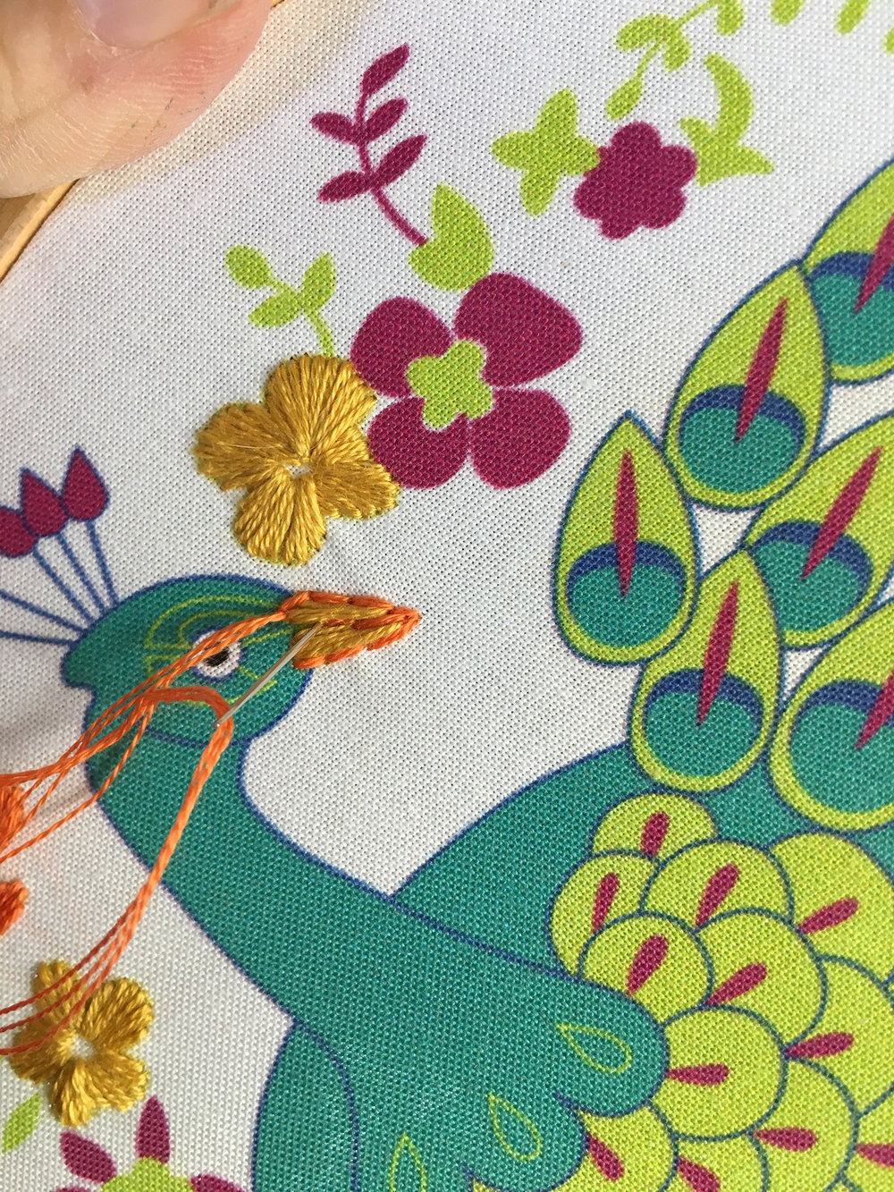peacock beak 3 rikrack.jpg