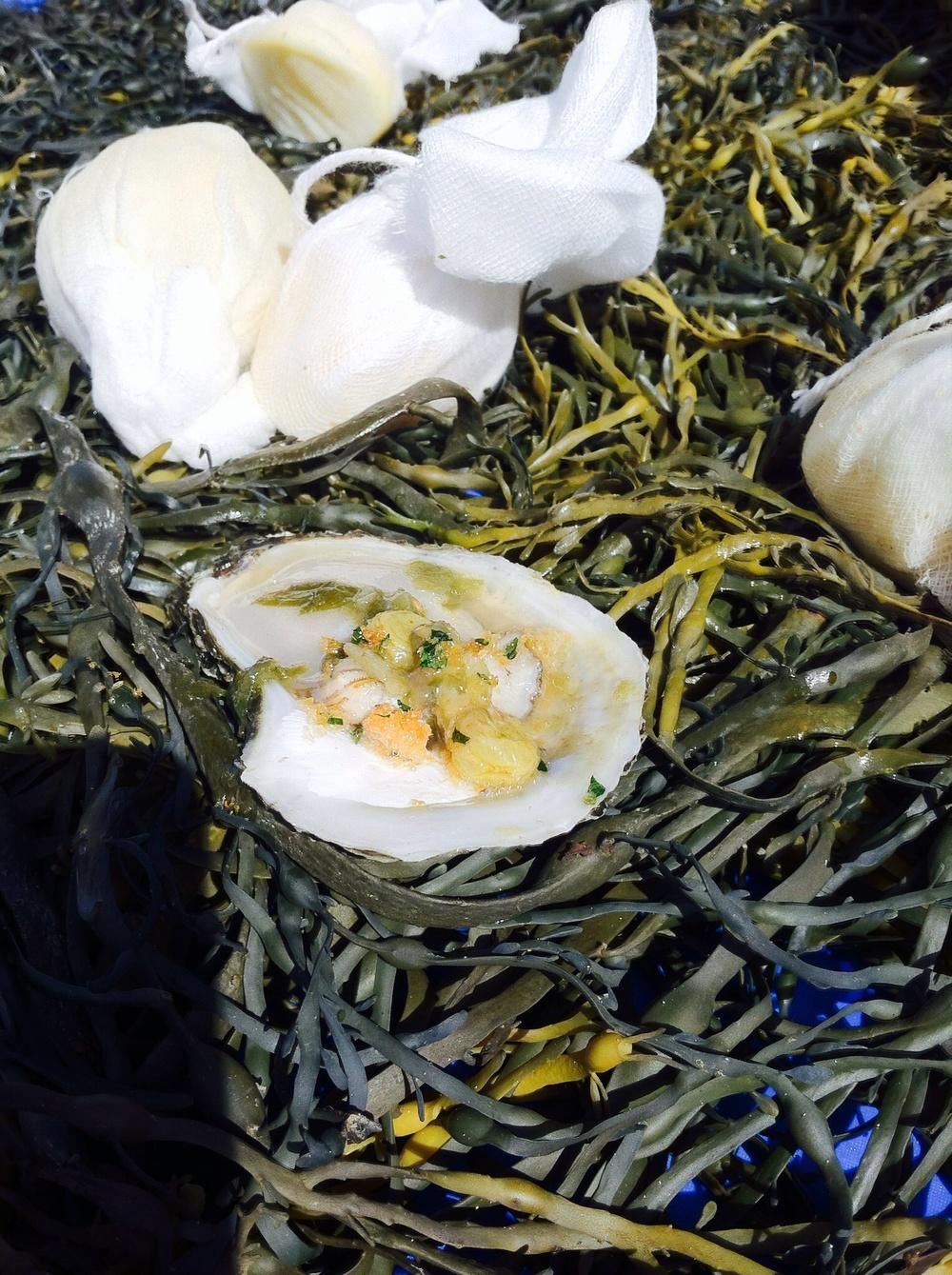 Blue whale oyster awesomeness. Photo by Shana Sokol, Shana Speaks Wine.
