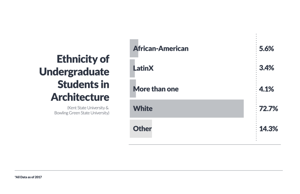 ddi_bargraphs_design ethnicities_final-02.png