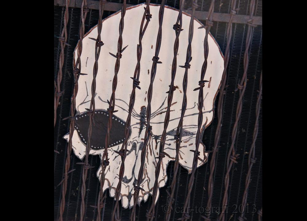 skullwire.jpg