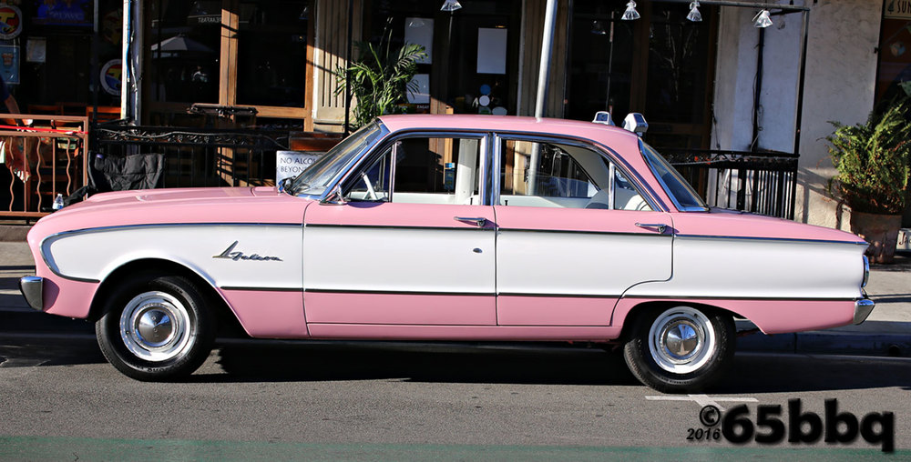 Falcon in pink Belmont Shores 2015 65bbq