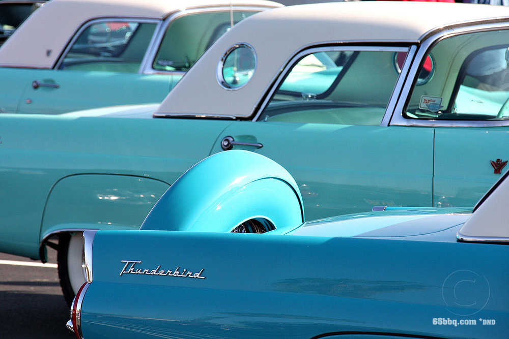 Thunderbird 65bbq.