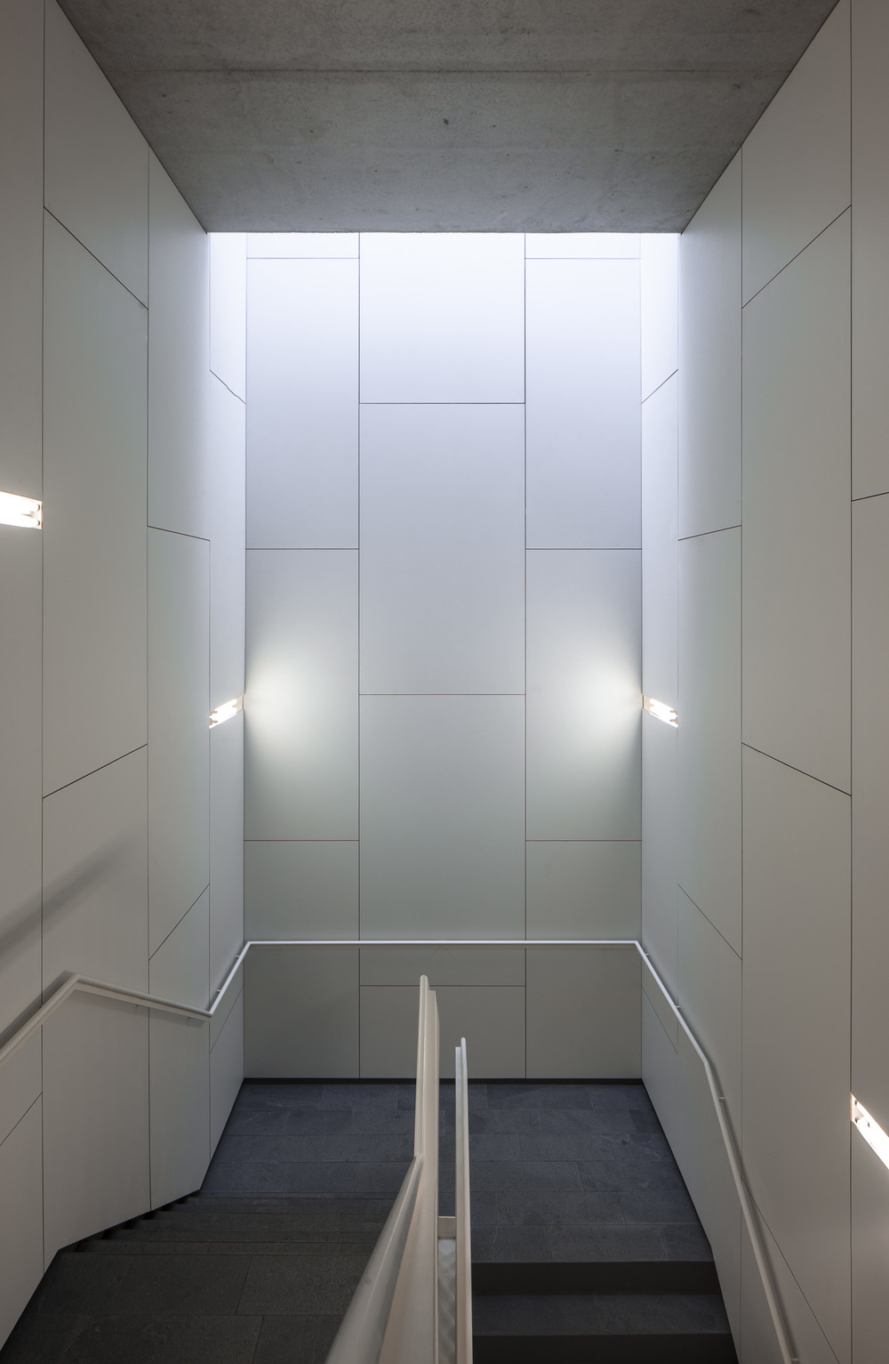 Stairs down to hospitalization areas, with skylights.