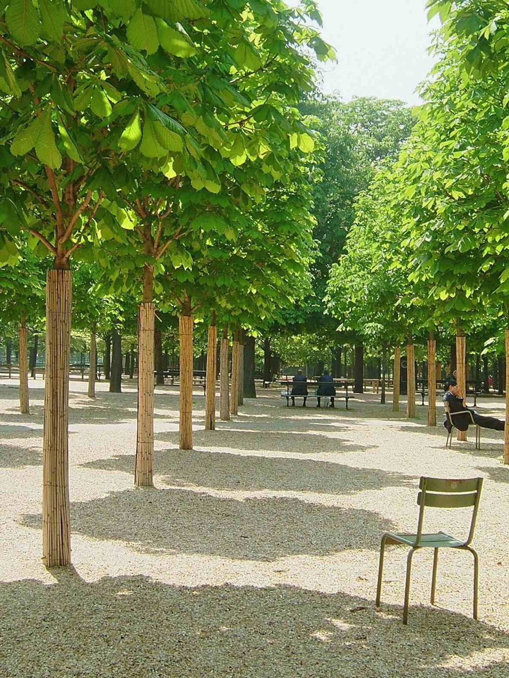 3_tuileries_paris.jpg