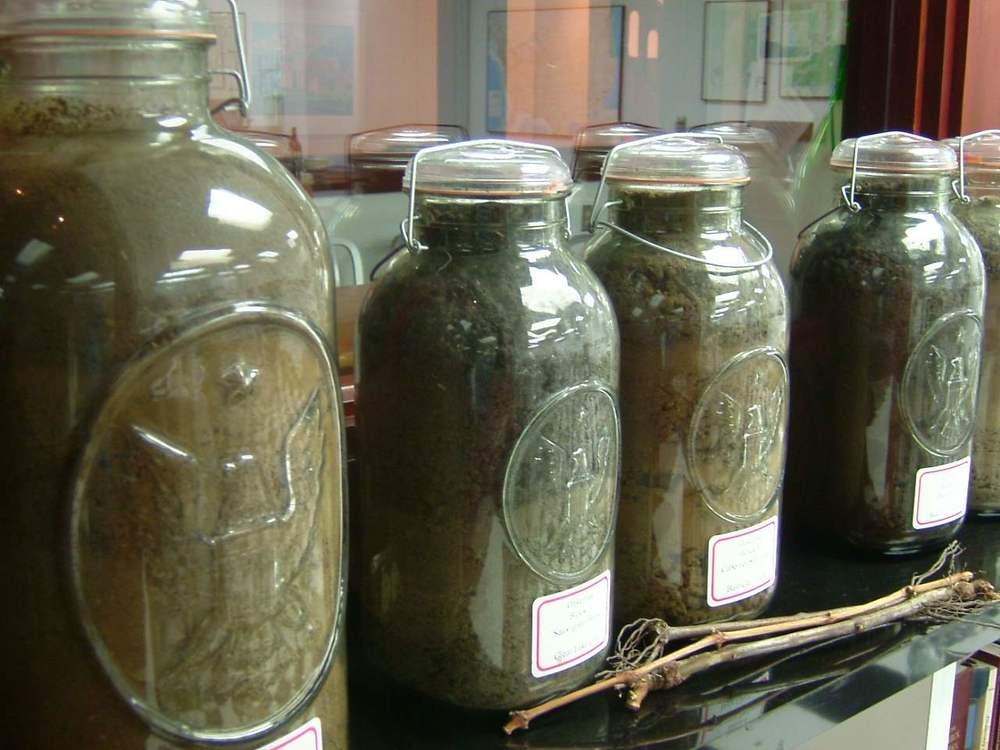soil_jars.jpg