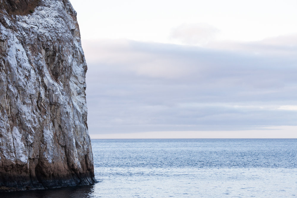 Galapagos2015-08-292997.jpg