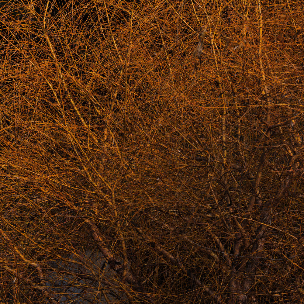 NYC_2009-12-27_0807.jpg